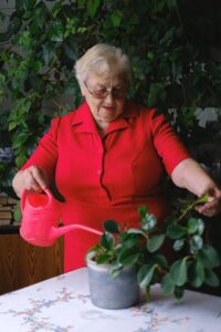 Old woman watering a plant
